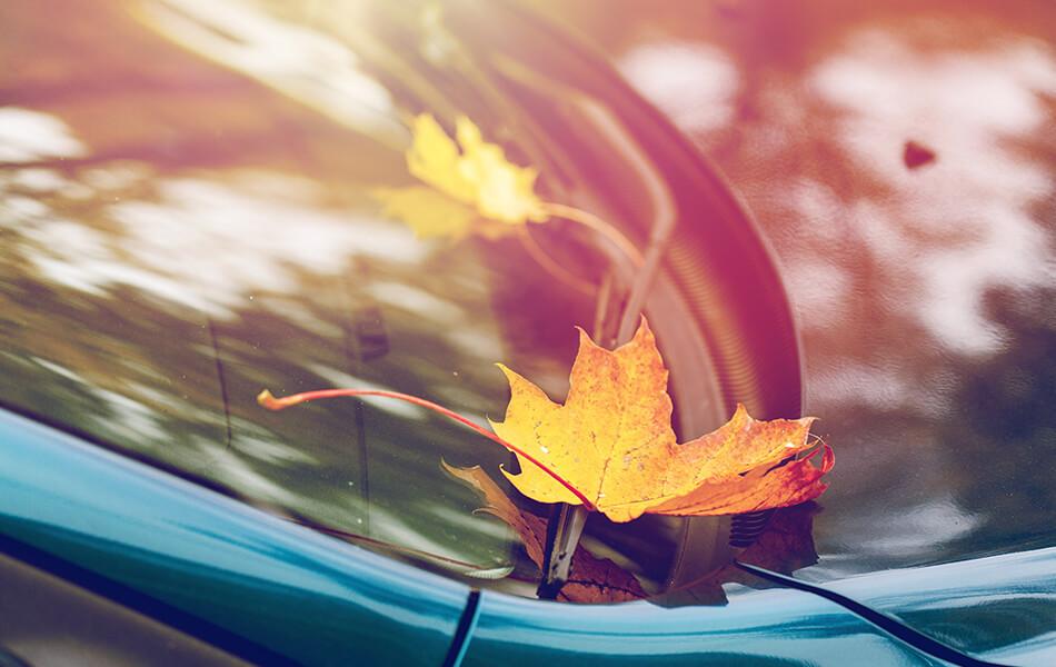 fall-vehicle-maintenance
