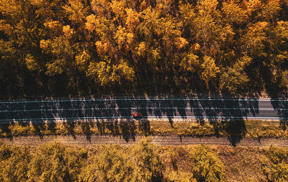 fall-activities-from-your-car