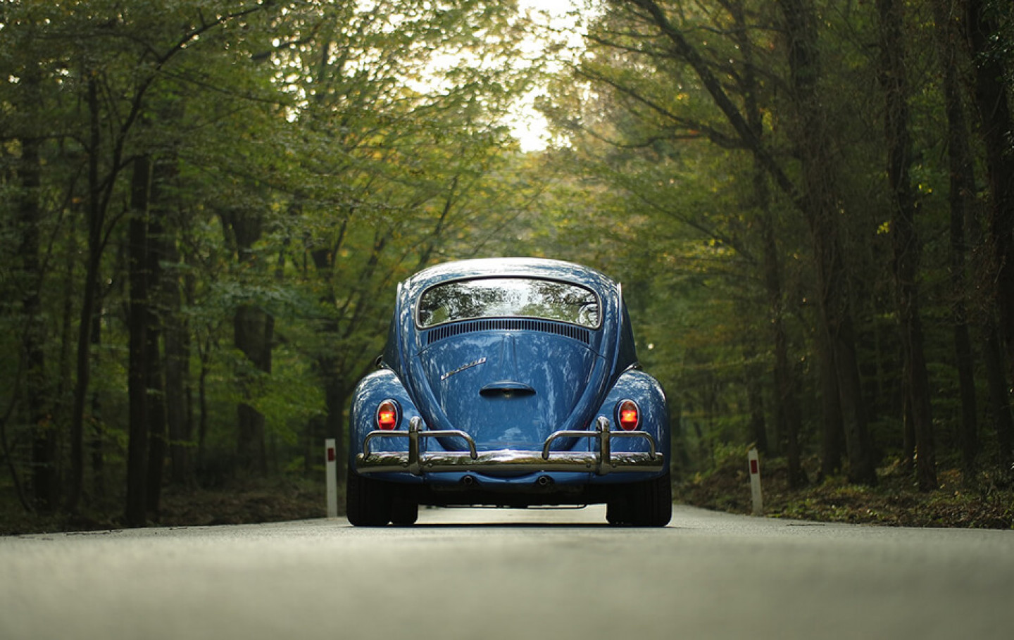 things-you-didnt-know-about-vw-beetles
